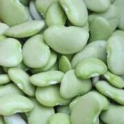 lima bean respect day