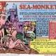 National Sea Monkey Day