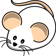 american fancy rat and mouse show